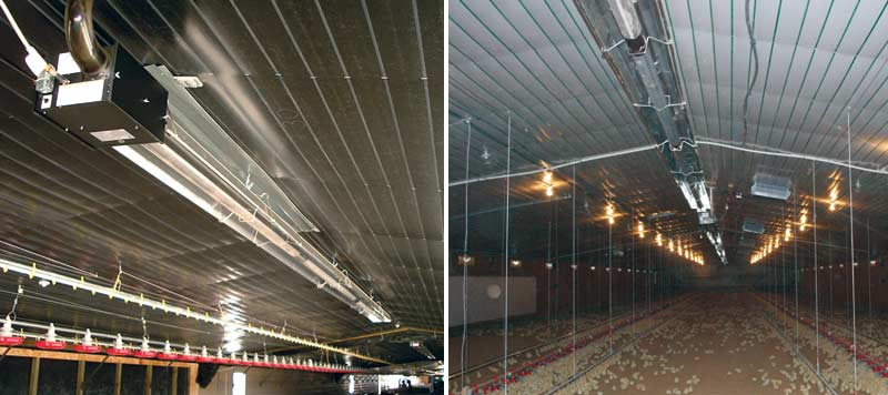 Poultry Barn | Infrared Tube Heaters | RG Infrared Heating